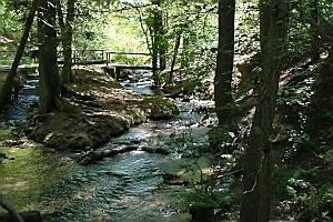 [title] - Der Unesco-Naturpark Bergstraße-Odenwald ist ein Paradies für Naturliebhaber, Wanderer und Familien, der auf eigene Faust oder unter fachmännischer Führung von Geopark-Rangern erkundet werden können.