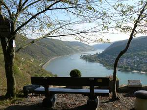 Radfahren auf dem Rhein-Radweg