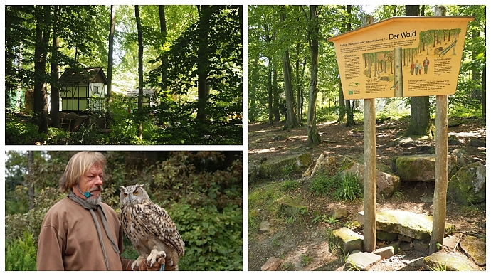 Märchenparadies, Falknerei und Walderlebnispfad auf dem Königstuhl bei Heidelberg