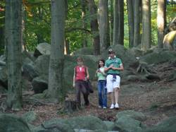 [title] - Steine und Fossilien geben Antwort auf die Frage wie die Erde entstand und wie sich das Leben auf unserem Planeten entwickelte. Die verschiedenen Steinschichten, die an vielen Stellen in Deutschland erkundet werden können, enthalten zahlreiche Funde und erlauben uns einen Einblick in die faszienierende Geschichte der Erde.